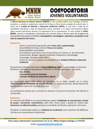 CONVOCATORIA JOVENES VOLUNTARIOS